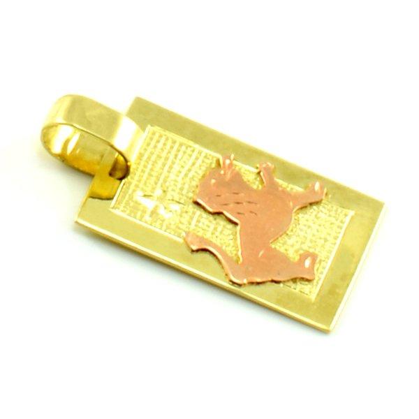 Zlatý platničkový prívesok-znamenie lev